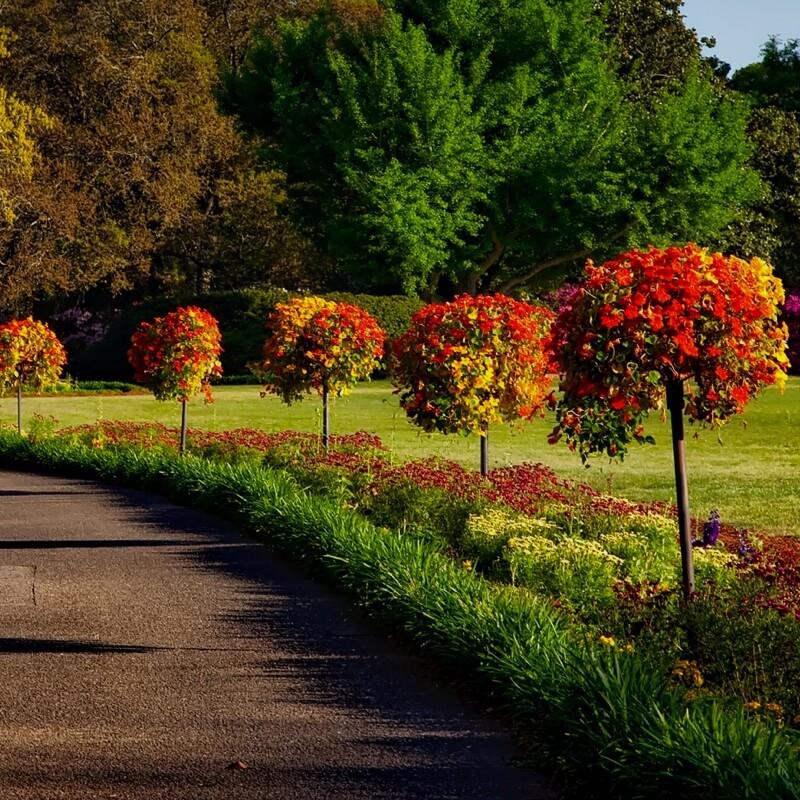Mack Land Landscape Architects Wauconda Denver Quality