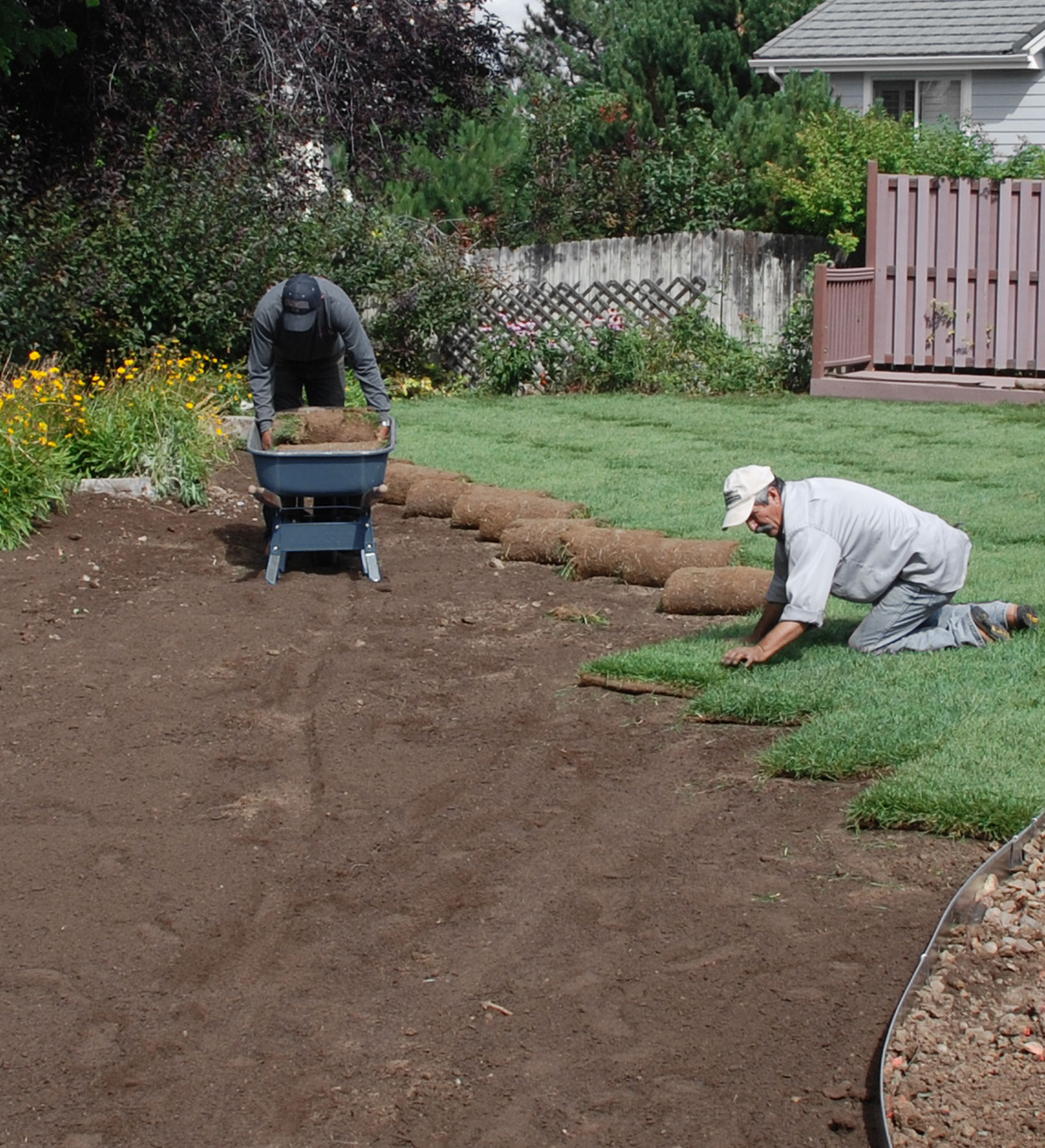 Mack Land Landscape Architects Wauconda Denver Sod Installation