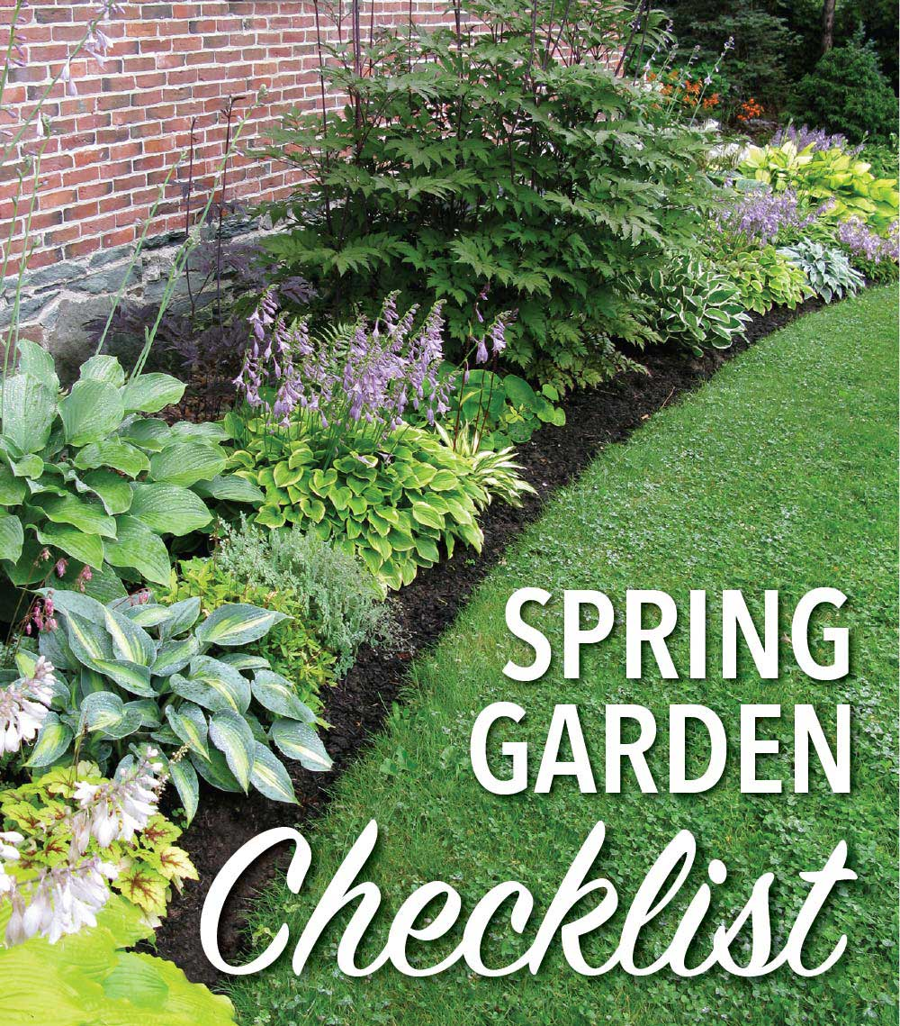 Mack Land LLC - Garden Checklist – June